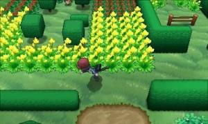 PokemonXY10