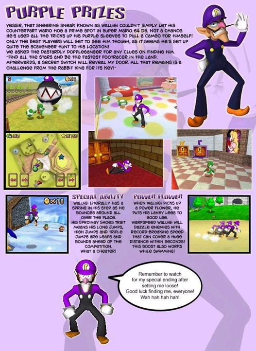 Purple Prizes (Waluig in Super Mario 64 DS)