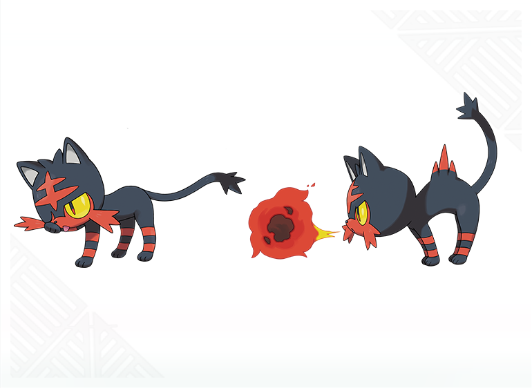 Litten Animation