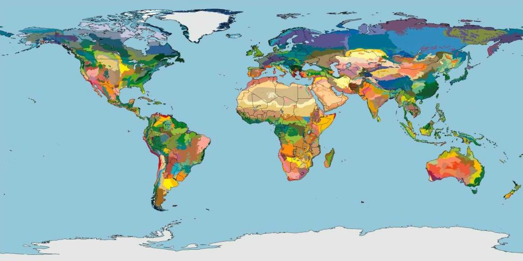 terra_map