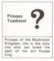 Princess Peach in Super Mario Bros 1 Manual