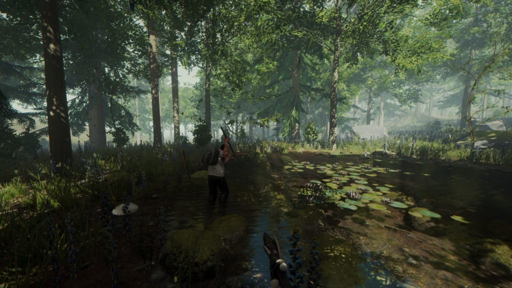 The Forest VR Game