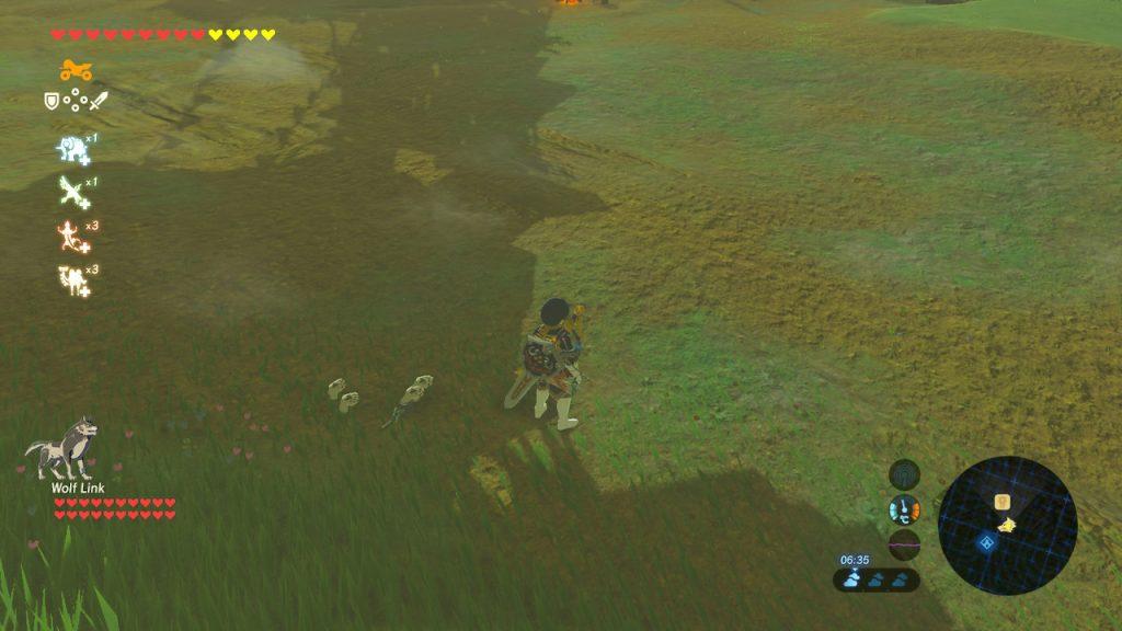 Upside down Wolf Link