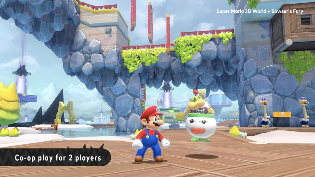 Bowser Jr Co-op