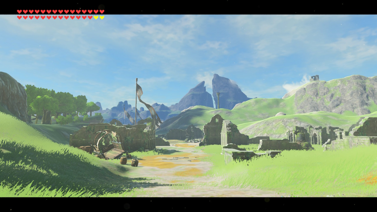 First Person View BoTW