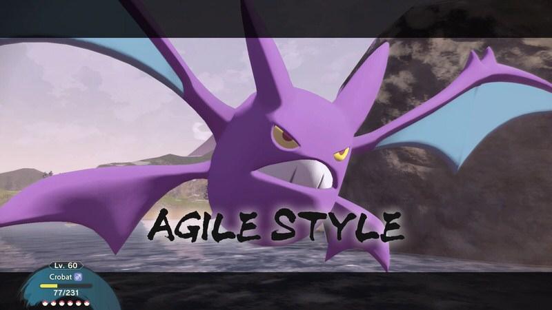 Agility Style